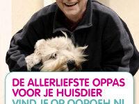 Een Oopoeh is een oudere (55+) die op jouw hond oppast (hondenoppas).