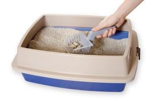 Als u de kattenbak wilt verschonen, trek dan handschoenen aan als u zwanger bent.