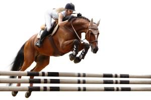 In de springsport gaat het erom dat ruiter en paard in een bepaalde volgorde over verschillende hindernissen springen.©Kseniya Abramova - Fotolia